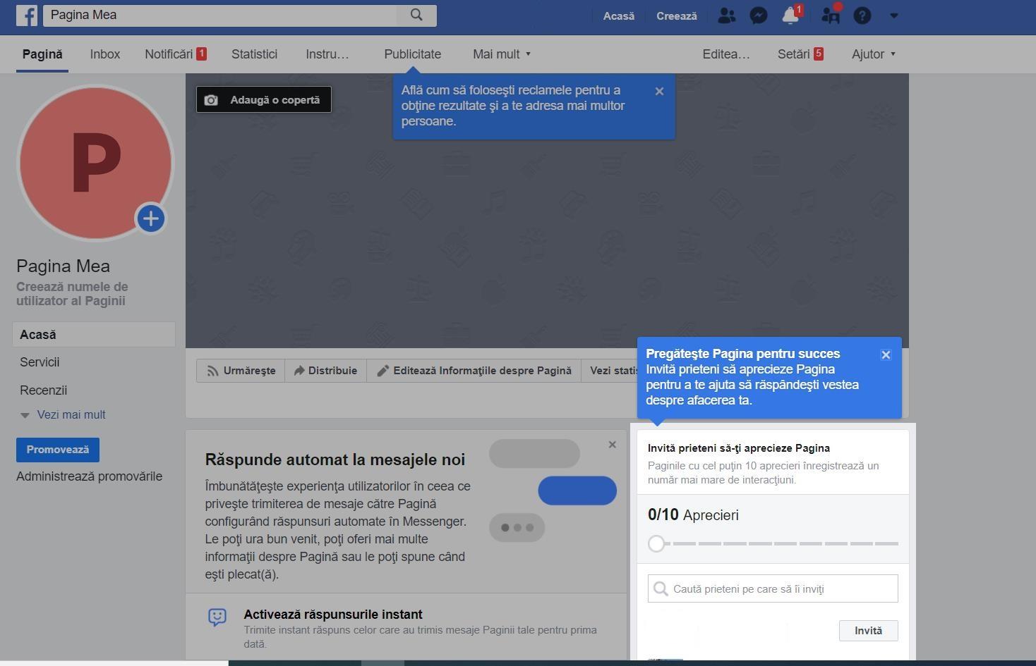 Revizuire pagina profesionala facebook